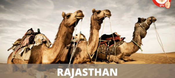 Rajasthan NEET Counselling